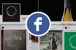 vin-les-terriens-facebook-3.png
